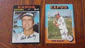 BaileyBob
